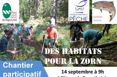 Chantier participatif le 14 septembre à Saverne
